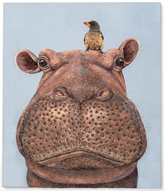 Portrait of a Hippo & Her Oxpecker Companion