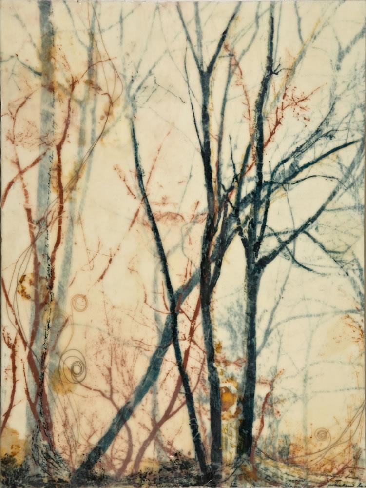 Tree Muse