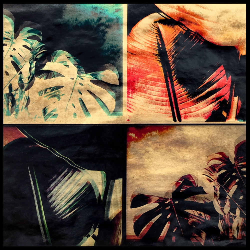 Monstera & Ribber Leaves Quadtych
