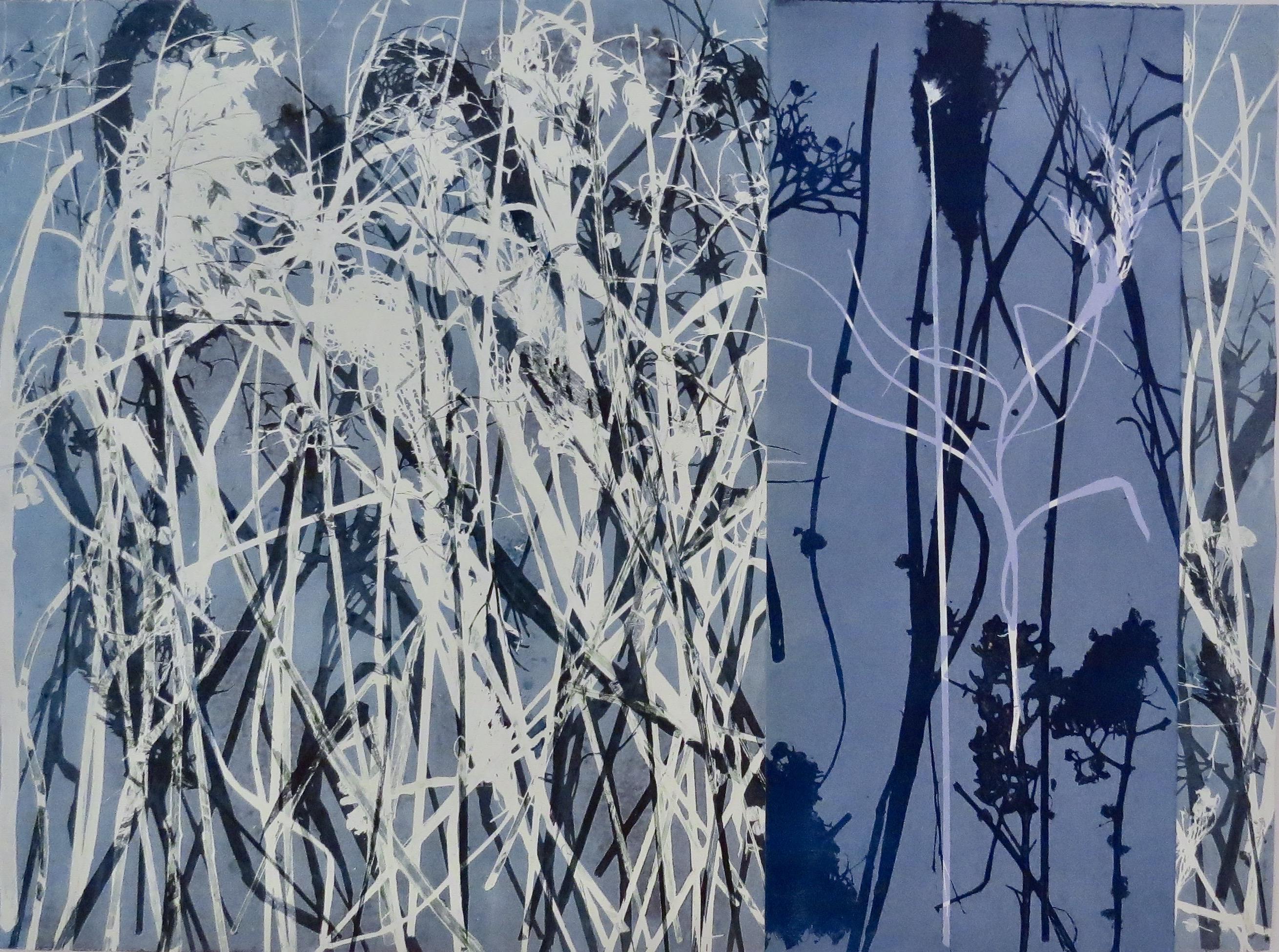 Winters Grassy Meadow